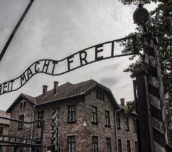 Bayer esperimenti Auschwitz
