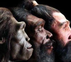 origine-uomo-sapiens