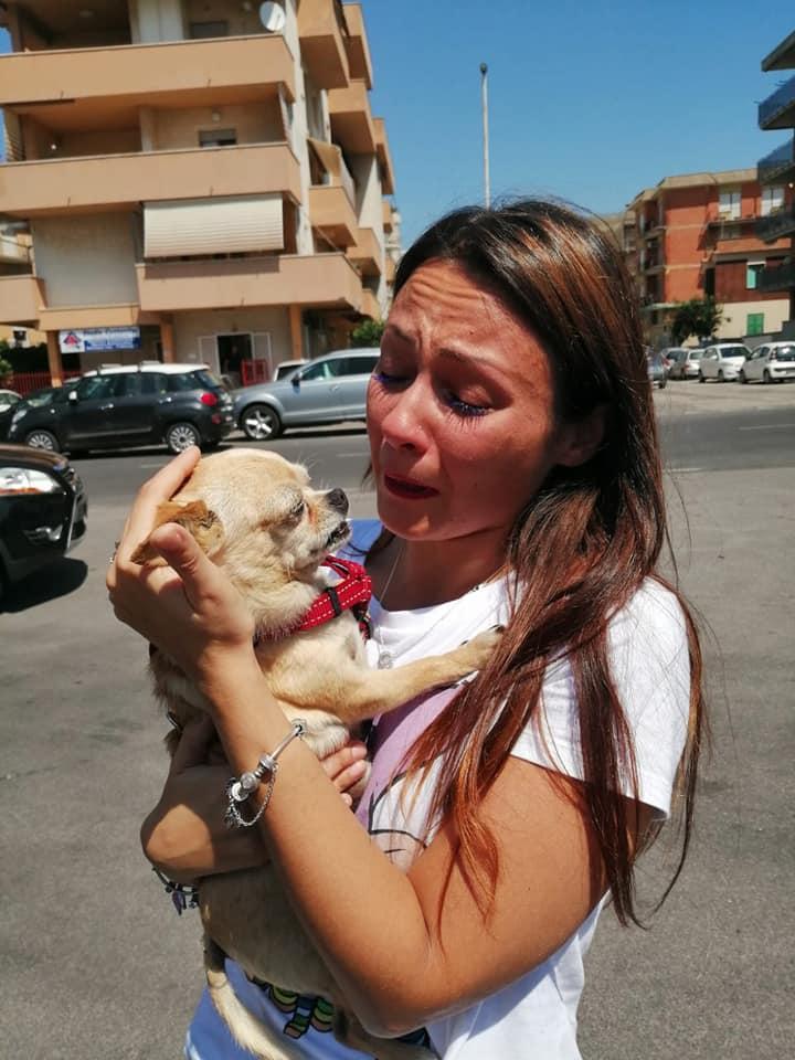 Photo of Ritrova il cane che aveva perso otto anni prima: la piccola Maya è tornata a casa