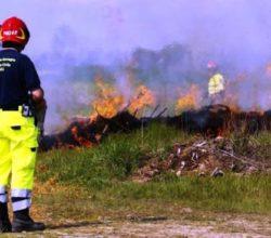 incendi-boschivi