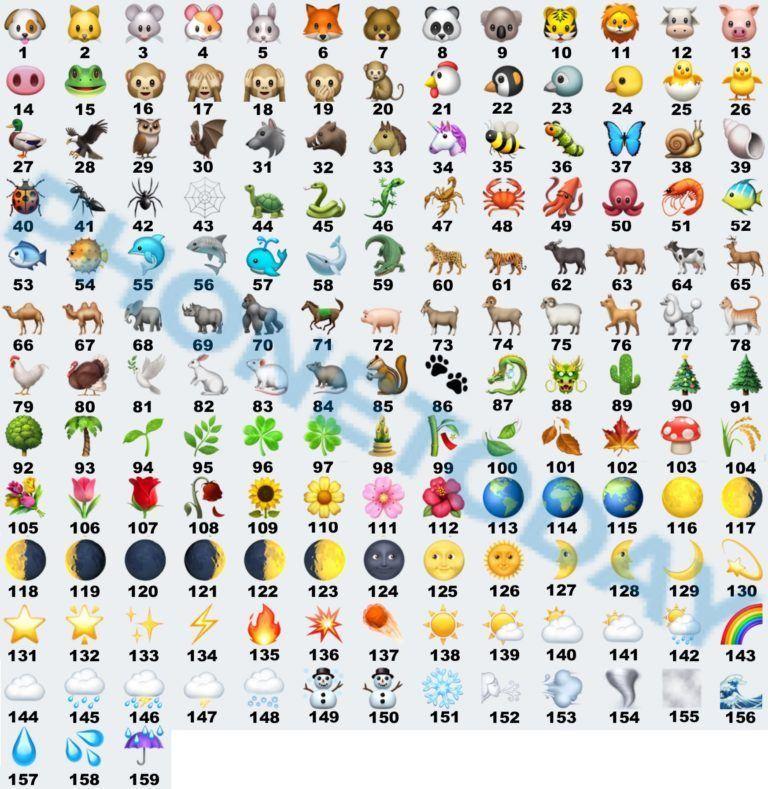 Mazzo Di Fiori Emoticon.Emoticon Whatsapp Il Significato Di Emoji Faccine E Simboli L