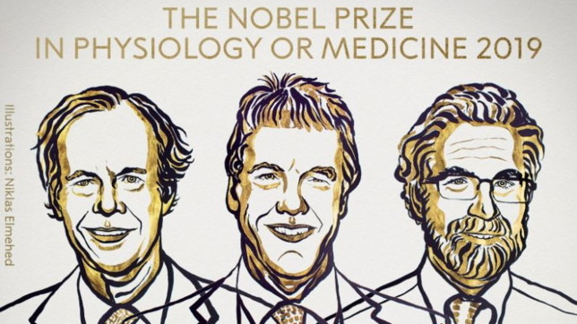 premio-nobel-2019-medicina