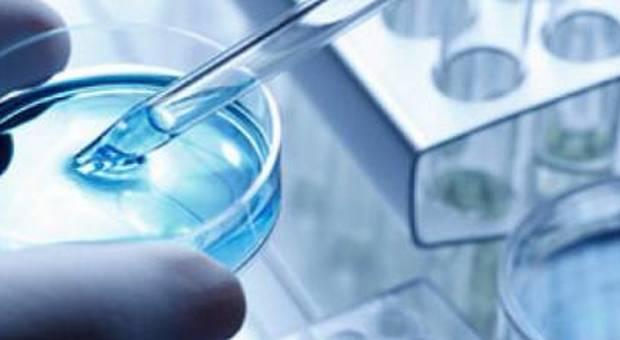 cellule-armate-cancro-sperimentazioni-campania