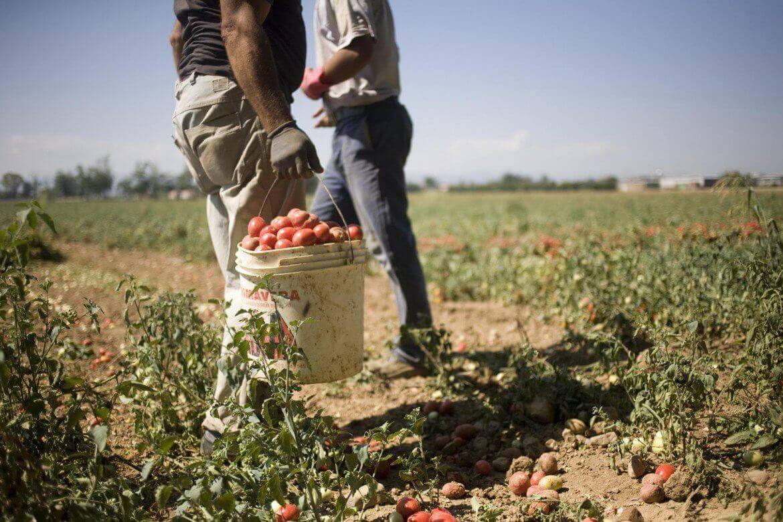 Photo of Giornata internazionale per l'abolizione della schiavitù: uniti contro la tratta di esseri umani
