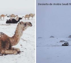 neve-arabia-saudita-tabuk