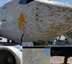 etiopia-locuste-impediscono-atterraggio-aereo