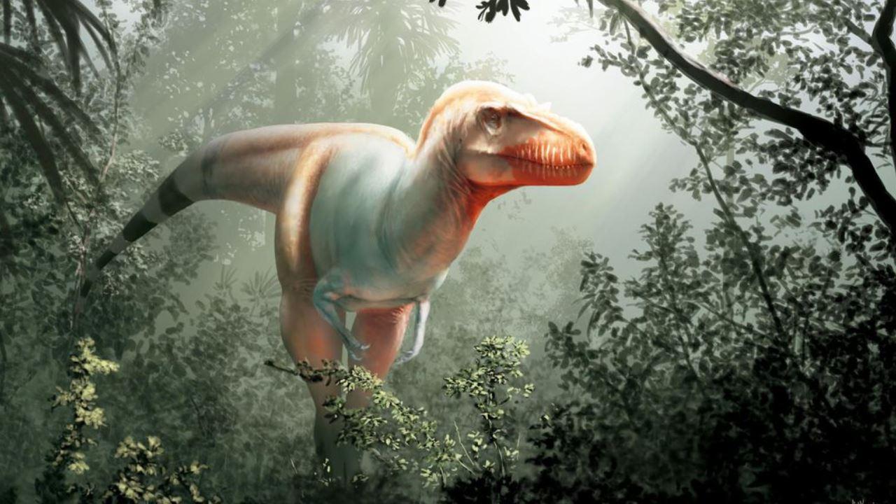 """Photo of Canada, scoperto il cugino del T rex: il """"mietitore di morte"""""""
