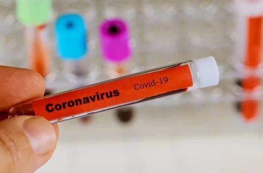 coronavirus-bollettino-spallallanzani