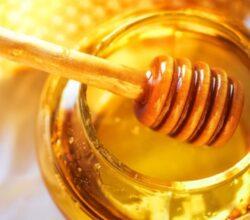 miele-cinese-italia-senza-api-adulterato-pericoloso