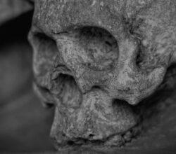 ossa umane