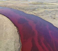disastro-ambientale-siberia-gasoli-lubrificanti-fiume
