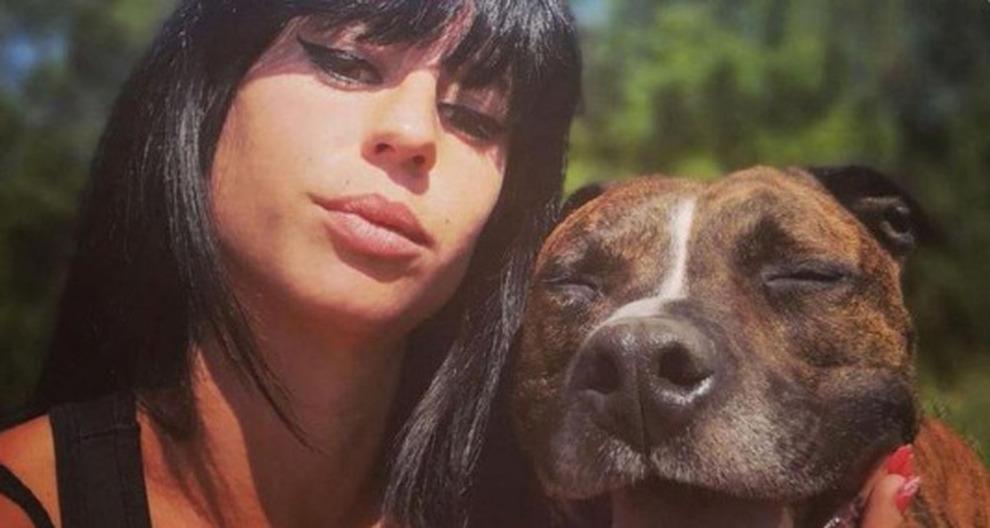 """Photo of Francia, cane sbrana la padrona incinta. Il compagno: """"Non è stato Curtis"""""""