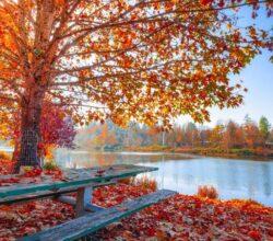 quando-inizia-autunno-2020-data-feste-significato