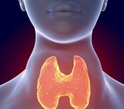 bonus-tiroide