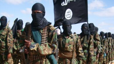 soldi-terroristi-islamici-reddito-cittadinanza