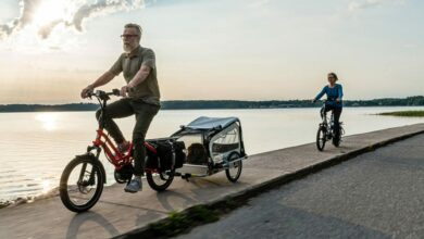 bonus bici cargo