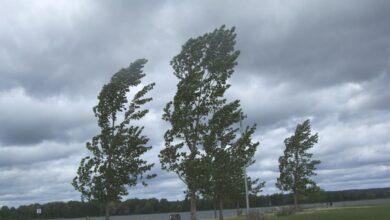 allerta-meteo-campania-vento-forte-28-dicembre