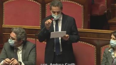 fiducia-governo-conte-intervento-senatore-cioffi-metafora-virale