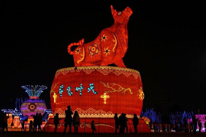 Capodanno cinese anno bufalo oroscopo