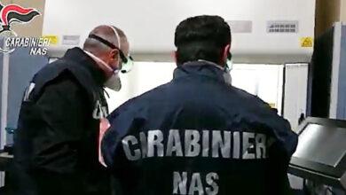 carabinieri-nas-1