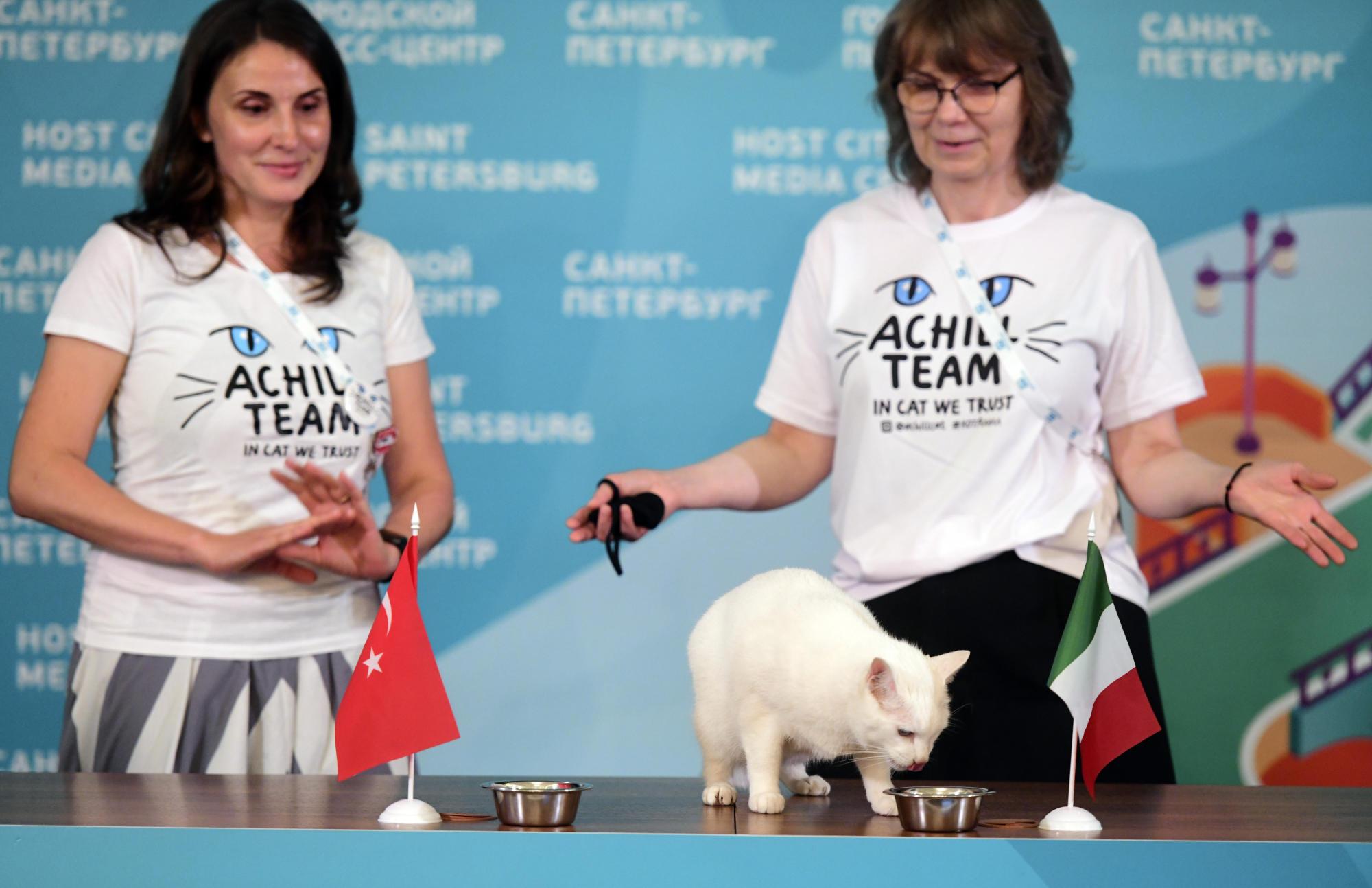 europei-2021-gatto-achille-pronostico-italia-turchia