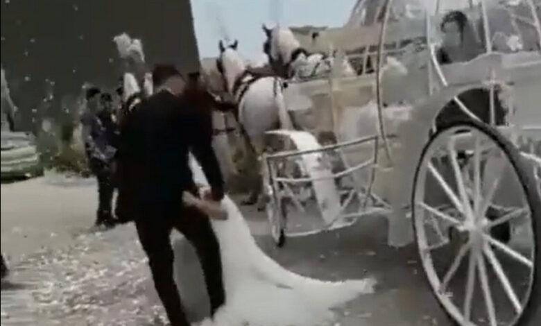 sposa-cade-cavalli-campania-matrimonio-dov-e-successo