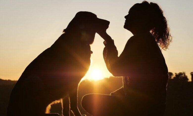 giornata-mondiale-cane-2021-frasi-aforismi-immagini-citazioni