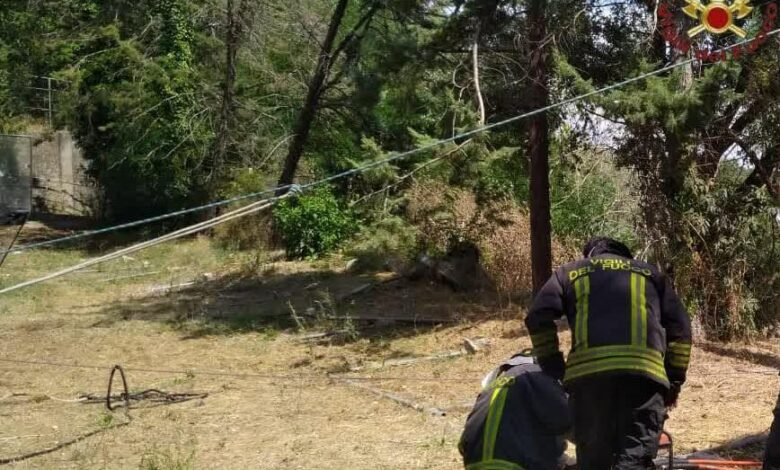 incidente-roma-taglia-albero-intrappolato