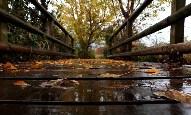 meteo autunno previsioni